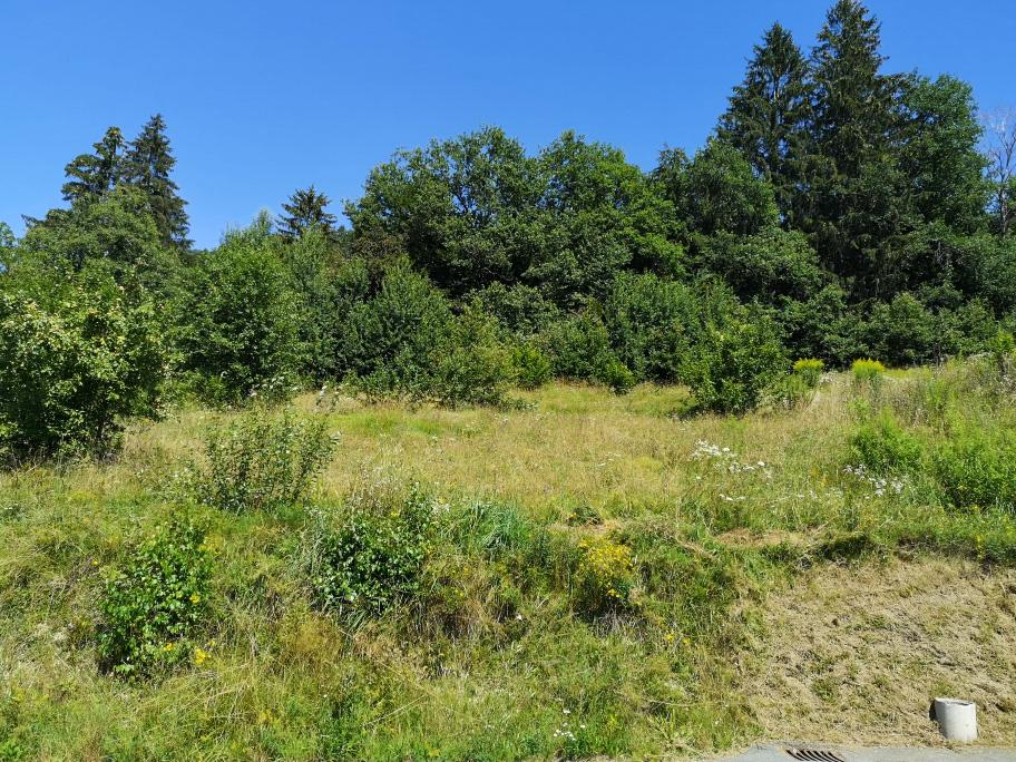 Naturnahes Baugrundstück in Hermagor Kärnten