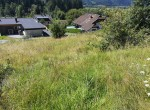 isepp-immobilienservice-naturnaher-baugrund-hermagor-4